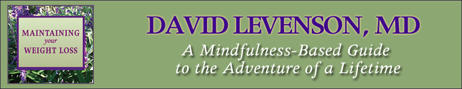 Maintaining Your Weight Loss By Dr David Levenson